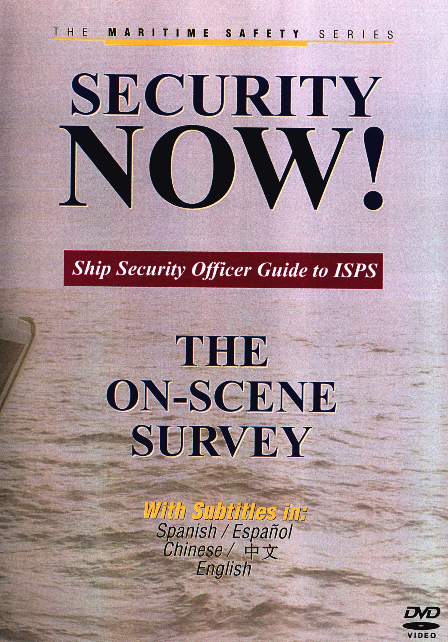 Security NOW! The On-Scene Survey